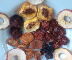 همه چیز درباره تولید میوه خشک صنعتی